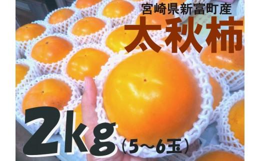 """【先行予約】石村さんの""""太秋""""柿 2kg以上(1箱)【A145】"""