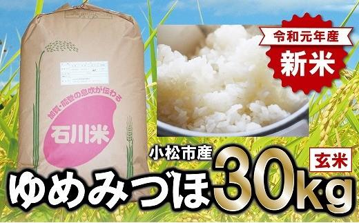 028001. 【冷めてもおいしい】早生品種の代表格ゆめみづほ 玄米30kg