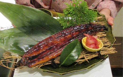 SZ019室戸の炙り鯖寿司とうなぎの蒲焼きセット