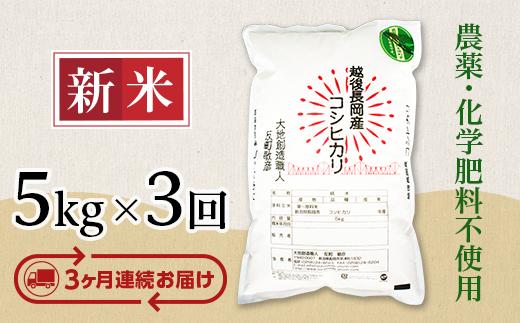 E1-06【3ヶ月連続お届け】新潟県産米コシヒカリ5kg