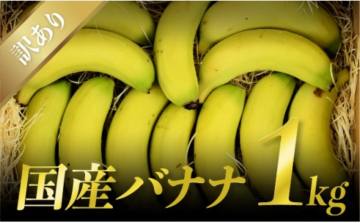 H5806【訳あり】国産バナナ1kg