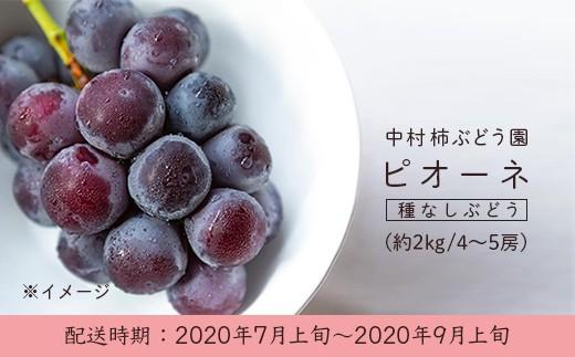 U155 中村柿ぶどう園 ピオーネ2kg箱 4~5房