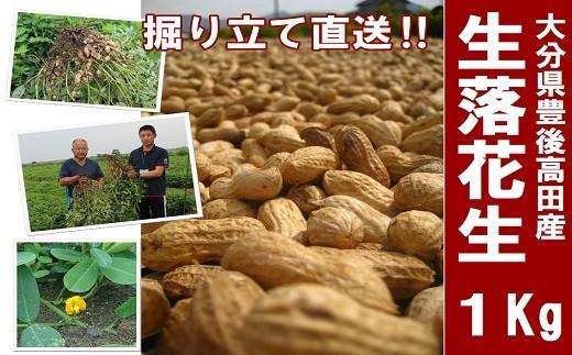 B-10 【先行予約】(1kg)ミネラルたっぷりの広大な砂地で育った落花生(生)