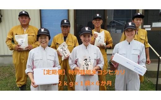 D13【新米!定期便】特別栽培米コシヒカリ(2㎏×6ヵ月)