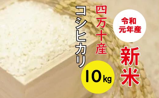 19-024C.9月限定【新米】四万十産コシヒカリ10kg