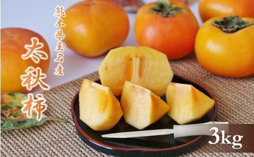 AZ34 太秋柿 熊本玉名産