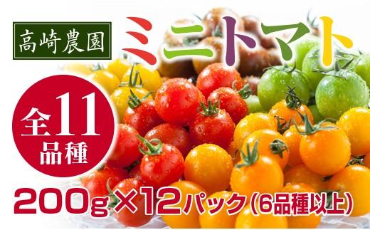 【先行予約・数量限定】高崎農園 ミニトマト 6品種以上 200g×12パック 詰め合わせセット<1-29>