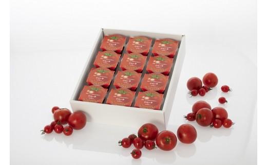 15-39 【食塩不使用】日向の雫 たっぷりトマトのプレミアムゼリー(12個入り)