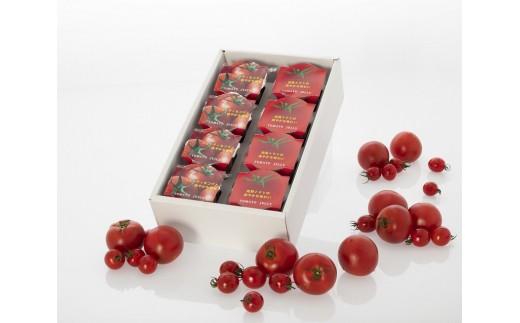 10-61 【太陽からの贈り物】日向の雫 プレミアムトマトジュースとたっぷりトマトのプレミアムゼリー詰め合わせ(各4個入り)