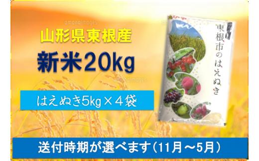 2019年産[精米]はえぬき20kg(送付時期が選べます)植松商店提供