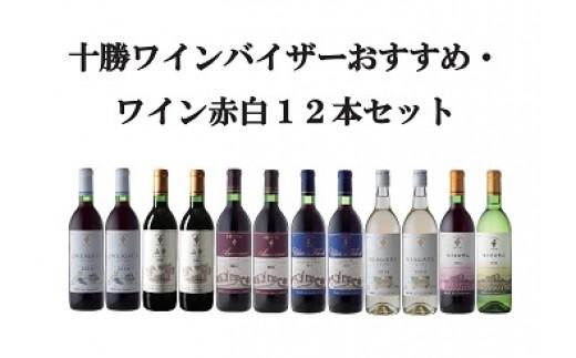 D002-3 十勝ワインバイザーおすすめワイン赤・白12本セット