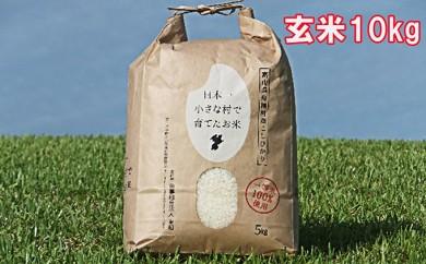 [№5705-0027]日本一小さな村で育てた富山県舟橋村産コシヒカリ【ばんどり米10kg】玄米