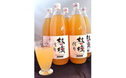 無添加5品種ブレンドリンゴジュース6本_A309【1074184】