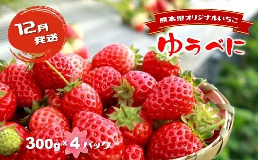 J5 イチゴ 熊本和水町 (12月発送)