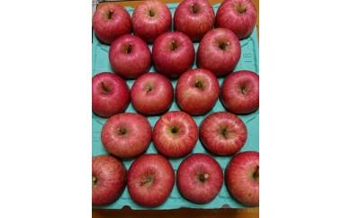 旬のりんご 5キロ 家庭用