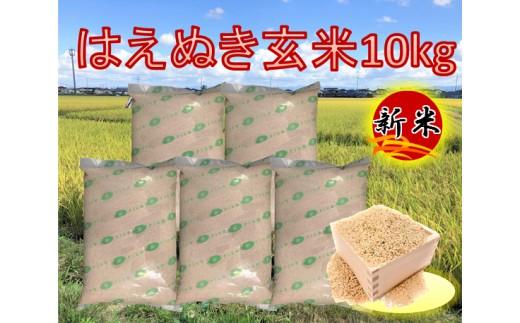A01-079 特別栽培米 はえぬき玄米10kg