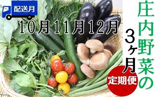 《10月から》【3ヶ月お届け】庄内野菜の定期便