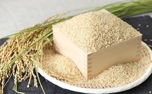B-61【新米】木村さんの炊飯器で発芽する発芽玄米(3合×6袋)