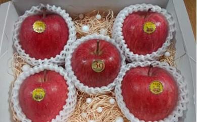 【先行受付】超完熟りんご「弘前産ふじ5個」