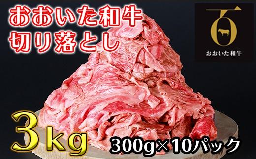 D6003 おおいた和牛切り落とし3kg(300g×10p)【匠牧場】※真空パック