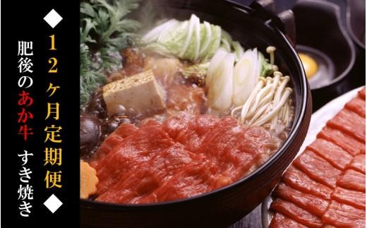 ◆12ヶ月定期便◆熊本県産 肥後のあか牛(すき焼き用500g×12)