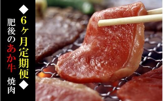 ◆6ヶ月定期便◆熊本県産 肥後のあか牛(焼肉用500g×6)