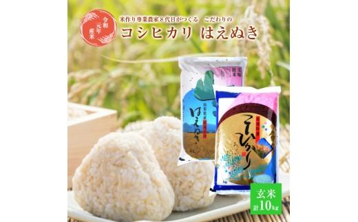 SA0338 令和元年産米 【玄米】コシヒカリ5kg、はえぬき5kg「農家直送」 KA