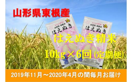 2019年産[精米・定期便]はえぬき10kg×6回(2019年11月~2020年4月の間毎月お届け)JA提供