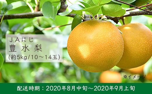 U208 JAにじ 豊水梨 5kg箱 10~14玉