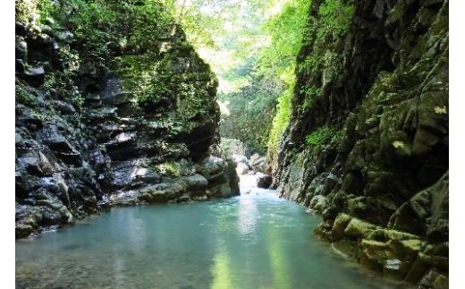御所山から流れ出る清冽な水