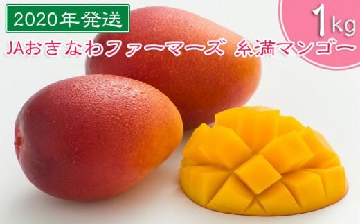 【2020年発送】JAおきなわファーマーズ 糸満マンゴー 1kg