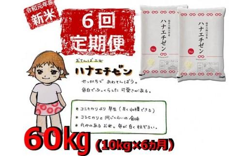 【令和元年産 新米 定期便】ハナエチゼン 10kg(5kgを2袋)×6回 受付開始[D01804]
