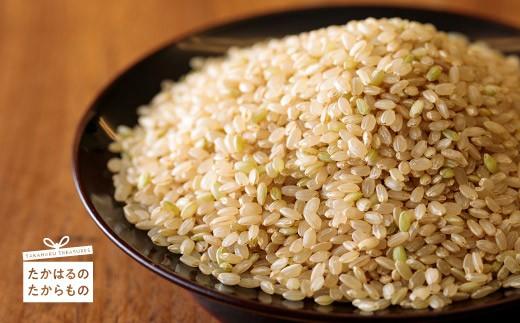 特産品番号65  高原町産 杜の穂倉 小清水栽培米 玄米30kg