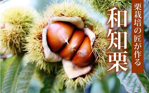 京丹波町和知地区の美しい自然と豊かな土壌が極上の和知栗をはぐくんでいます。