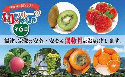 旬のフルーツ定期便 年6回【偶数月コース】★チョイス限定[A6004]
