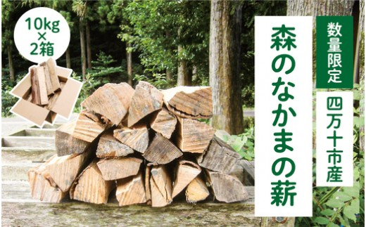 19-563.【数量限定】四万十市産 森のなかまの薪 約10㎏×2箱