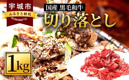 熊本県産 国産 黒毛和牛 切り落とし 1kg 牛肉 和牛