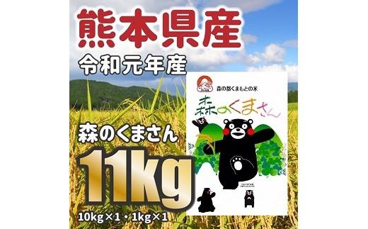 令和元年産★森のくまさん 11kg