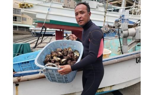 漁師の浅田さんが素潜り漁で水揚げしたサザエです!