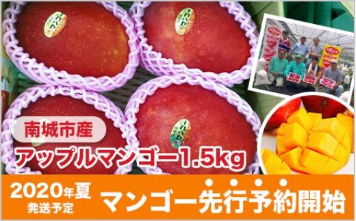 JA10:先行予約!南城市産アップルマンゴー1.5kg