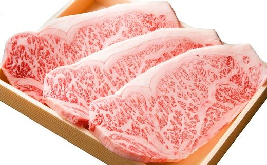 豊後牛サーロインステーキ(180g)×3枚【1078147】