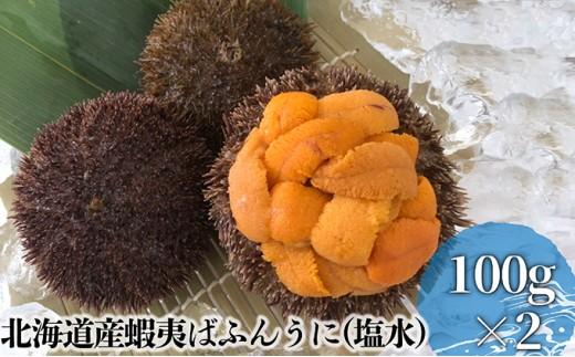 [№5863-0290]北海道産蝦夷ばふんうに(塩水)100g×2