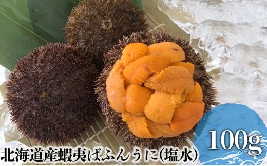 [№5863-0289]北海道産蝦夷ばふんうに(塩水)100g×1
