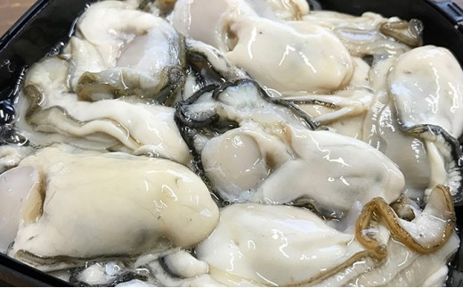 [№5863-0297]牡蠣むいちゃいました!(生食用)