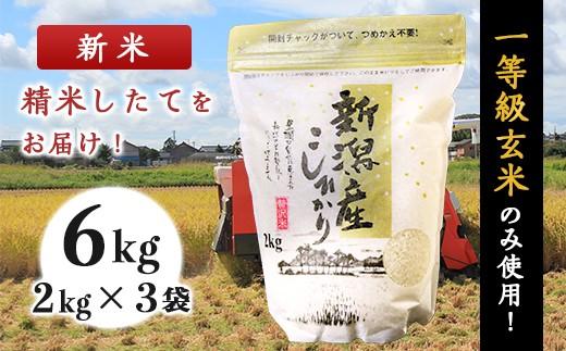 新潟県産コシヒカリ6kg(2kg×3袋)