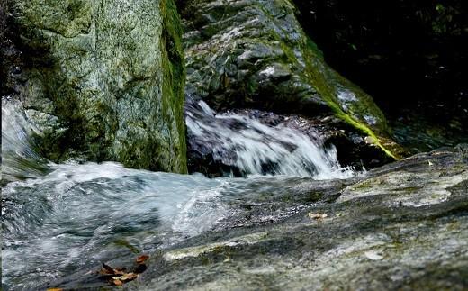 国土交通省の一級河水質調査で全国1位に認定された清流宮川の用水を使っています。