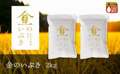 【令和元年産】金のいぶき 玄米 2kg(1kg×2袋)