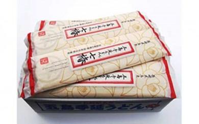 【国産原料100%の拘り麺】五島手延うどんセットMM-21