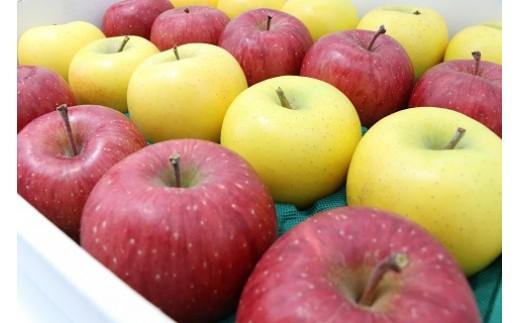 17A-5  二戸産りんご サンふじ&シナノゴールド 5キログラム