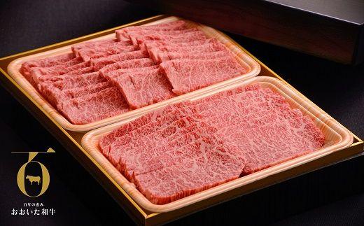 おおいた和牛食べ比べセット(上カルビ&上ロース)(合計600g)【1089358】